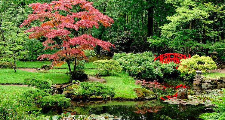 Een hovenier voor uw tuinonderhoud