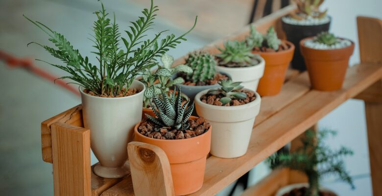Nep planten